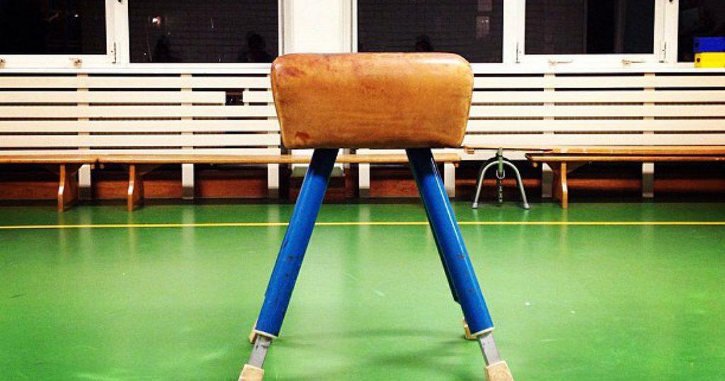 Professionele sport leraren op basisscholen