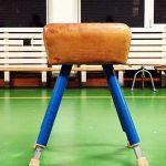 VVD wil alleen afgestudeerde sportleraren
