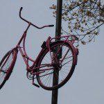 Roze weekend voor Dumoulin.